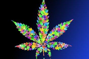 Multi-colored cannabis leaf